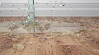 Một số lỗi thường gặp ở sàn gỗ tự nhiên và cách xử lý hiệu quả.